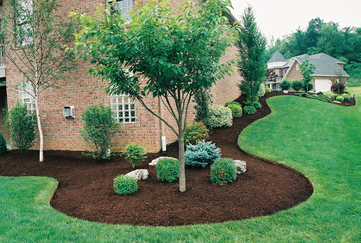 Mulching Tip From Moyers Lawn Service And Landscaping Moyers