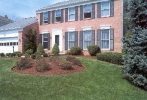 spring lawn and garden tips