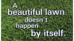 Lawn Maintenance by Moyers Lawn Service and Landscaping